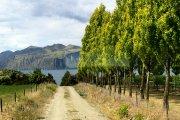 ニュージーランド10日目写真03