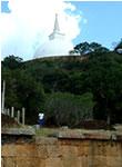 スリランカ2日目写真11