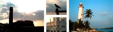 スリランカ6日目写真11