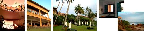 スリランカ6日目写真12