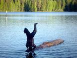 フィンランド1日目写真05