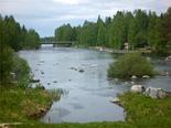 フィンランド2日目写真06
